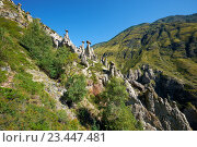 Купить «Каменные грибы на Алтае / Nature phenomenon Stone Mushrooms in Altai mountains near river Chulyshman», фото № 23447481, снято 24 августа 2016 г. (c) Serg Zastavkin / Фотобанк Лори