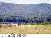 Старый деревянный забор. Стоковое фото, фотограф Игорь Аникин / Фотобанк Лори