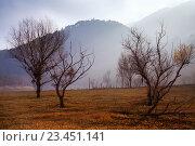 Купить «Misty landscape of Catalonia in winter morning», фото № 23451141, снято 18 октября 2018 г. (c) Яков Филимонов / Фотобанк Лори