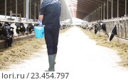 man feeding cows with hay in cowshed on dairy farm. Стоковое видео, видеограф Syda Productions / Фотобанк Лори