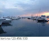 Купить «Яхты и катера у причала в морском порту Сочи, закатные облака», фото № 23456133, снято 21 августа 2016 г. (c) DiS / Фотобанк Лори