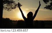 Купить «Силуэт женщины в лесу на закате. Концепция свободы.», видеоролик № 23459657, снято 30 августа 2016 г. (c) Aleksey Popov / Фотобанк Лори