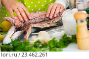 Купить «Close up hands salting fish in home kitchen», фото № 23462261, снято 19 июля 2019 г. (c) Яков Филимонов / Фотобанк Лори