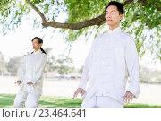 Купить «People practicing thai chi in park», фото № 23464641, снято 19 декабря 2014 г. (c) Sergey Nivens / Фотобанк Лори