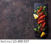 Купить «Раки вареные», фото № 23488937, снято 22 июля 2016 г. (c) Лисовская Наталья / Фотобанк Лори