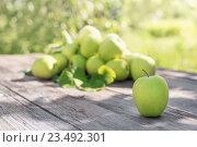 Купить «green apples on wooden background outdoor», фото № 23492301, снято 16 июля 2016 г. (c) Майя Крученкова / Фотобанк Лори