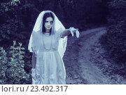 Купить «ghost in the night forest», фото № 23492317, снято 16 июля 2016 г. (c) Майя Крученкова / Фотобанк Лори