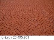 Купить «Красная тротуарная плитка», фото № 23495801, снято 26 апреля 2016 г. (c) Сергей Трофименко / Фотобанк Лори