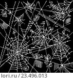 Купить «Белая паутина на черном фоне», иллюстрация № 23496013 (c) Одиссей / Фотобанк Лори