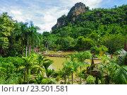 Купить «Деревянный храм Wat Khao Wong Buddhist temple в провинции Утхайтхани, Таиланд», фото № 23501581, снято 2 сентября 2016 г. (c) Natalya Sidorova / Фотобанк Лори
