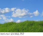 Купить «Зеленая трава и небо с облаками», фото № 23502757, снято 26 февраля 2020 г. (c) ViktoriiaMur / Фотобанк Лори