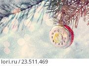 Купить «Новогодний фон со стеклянной игрушкой в виде часов на ветви новогодней елки. Новогодняя поздравительная открытка», фото № 23511469, снято 5 января 2016 г. (c) Зезелина Марина / Фотобанк Лори