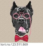 Купить «Собака породы Кане Корсо в очках и бабочке, рисунок», иллюстрация № 23511869 (c) Коваленкова Ольга / Фотобанк Лори