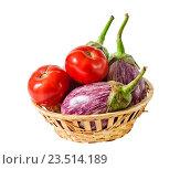 Купить «Баклажаны и помидоры в корзине, изолированно на белом фоне», фото № 23514189, снято 3 сентября 2016 г. (c) Elena Molodavkina / Фотобанк Лори