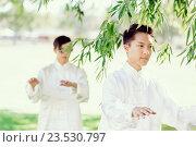 Купить «People practicing thai chi in park», фото № 23530797, снято 19 декабря 2014 г. (c) Sergey Nivens / Фотобанк Лори