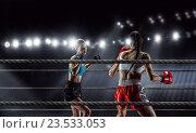 Купить «Girls boxing in ring . Mixed media», фото № 23533053, снято 16 января 2019 г. (c) Sergey Nivens / Фотобанк Лори