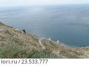 800 ступенек к морю в Анапе (2014 год). Стоковое фото, фотограф Александр Брезденюк / Фотобанк Лори