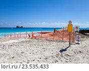 Купить «Укладка нового песка на пляже. Мексика», фото № 23535433, снято 7 февраля 2010 г. (c) Куликов Константин / Фотобанк Лори