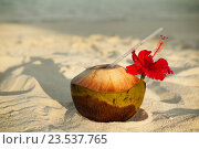 Купить «coconut drink on exotic tropical maldives beach», фото № 23537765, снято 11 февраля 2016 г. (c) Syda Productions / Фотобанк Лори