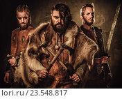 Купить «Mad vikings warriors posing in studio on dark background.», фото № 23548817, снято 29 августа 2016 г. (c) Andrejs Pidjass / Фотобанк Лори