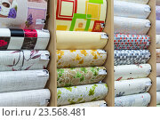 Купить «Showcase in shop with wallpaper», фото № 23568481, снято 11 августа 2016 г. (c) Володина Ольга / Фотобанк Лори