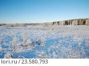 Купить «Зимний пейзаж с инеем», фото № 23580793, снято 29 декабря 2014 г. (c) Елена Коромыслова / Фотобанк Лори