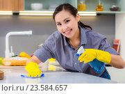 Уборка кухни, красивая девушка в резиновых перчатках убирается на кухне. Стоковое фото, фотограф Mark Agnor / Фотобанк Лори
