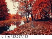 Купить «Autumn picturesque landscape - autumn trees and narrow forest river in cloudy weather», фото № 23587193, снято 1 января 2009 г. (c) Зезелина Марина / Фотобанк Лори