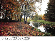 Купить «Autumn mysterious landscape in vintage colors - autumn trees and narrow forest river in cloudy weather», фото № 23587229, снято 1 января 2009 г. (c) Зезелина Марина / Фотобанк Лори