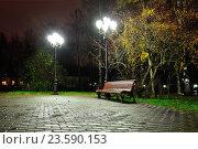 Купить «Autumn night landscape of night autumn park», фото № 23590153, снято 8 ноября 2015 г. (c) Зезелина Марина / Фотобанк Лори
