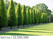 Купить «Baroque garden Abbey Kamp, Kamp-Lintfort, Germany», фото № 23595589, снято 20 февраля 2019 г. (c) age Fotostock / Фотобанк Лори