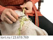Купить «Изделия из лозы. Мальчик делает прутик, крупный план», фото № 23619769, снято 8 сентября 2016 г. (c) Гурьянов Андрей / Фотобанк Лори