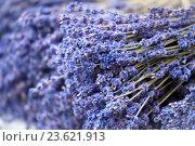 Купить «Lavender handmade bunches», фото № 23621913, снято 6 сентября 2016 г. (c) Татьяна Белова / Фотобанк Лори