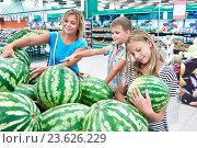 Купить «Мама с детьми выбирает арбуз в супермаркете», фото № 23626229, снято 18 августа 2016 г. (c) Сергей Рыжов / Фотобанк Лори