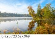 Солнечный осенний пейзаж. Стоковое фото, фотограф Валерий Боярский / Фотобанк Лори