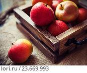 Купить «Красные яблоки в деревянном ящике», фото № 23669993, снято 11 апреля 2016 г. (c) Вероника Галкина / Фотобанк Лори