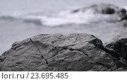 Купить «Океанские волны разбиваются о прибрежные камни и создают брызги», видеоролик № 23695485, снято 22 февраля 2019 г. (c) Сергей Громыко / Фотобанк Лори