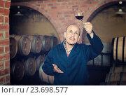 Купить «winery employee in cellar with glass of wine», фото № 23698577, снято 14 июля 2020 г. (c) Яков Филимонов / Фотобанк Лори