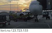 Купить «Timelapse of loading airplane at sunset», видеоролик № 23723133, снято 7 ноября 2015 г. (c) Данил Руденко / Фотобанк Лори