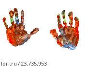 Красочные отпечатки ладоней. Стоковое фото, фотограф Анатолий Платонов / Фотобанк Лори