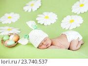 Купить «sleeping baby infant with a rabbit ears and carrot among daisy», фото № 23740537, снято 24 марта 2012 г. (c) Оксана Кузьмина / Фотобанк Лори