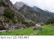 Овечий загон из камня в долине реки Дугоба в Киргизской Республике (2016 год). Стоковое фото, фотограф Дмитрий Шульгин / Фотобанк Лори