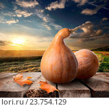 Купить «Pumpkins on wooden table on a background of the field», фото № 23754129, снято 4 мая 2013 г. (c) easy Fotostock / Фотобанк Лори
