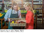 Купить «Woman selecting fresh vegetables from basket», фото № 23764761, снято 17 мая 2016 г. (c) Wavebreak Media / Фотобанк Лори