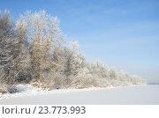 Купить «Зимний пейзаж с инеем в солнечный день», фото № 23773993, снято 22 января 2014 г. (c) Елена Коромыслова / Фотобанк Лори