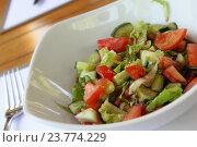 Тарелка с салатом. Стоковое фото, фотограф Allika / Фотобанк Лори