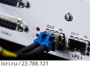 Купить «Close-up of patch cable connected in socket», фото № 23788121, снято 11 июля 2016 г. (c) Wavebreak Media / Фотобанк Лори