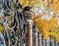 Михайловский сад — фигурная художественная ограда в виде цветов и листьев на фоне осеннего парка, Санкт-Петербург, Россия. Осенний пейзаж, фото № 23790573, снято 3 октября 2016 г. (c) Зезелина Марина / Фотобанк Лори