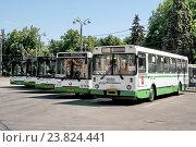 Купить «Припаркованные городские автобусы ЛиАЗ», эксклюзивное фото № 23824441, снято 8 июня 2015 г. (c) stargal / Фотобанк Лори