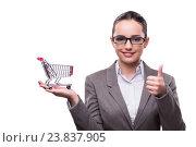Купить «Woman with shopping cart isolated on white», фото № 23837905, снято 15 июля 2016 г. (c) Elnur / Фотобанк Лори